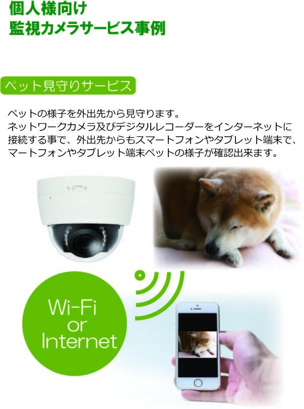 個人向け監視カメラ1